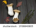 Two Large Mushrooms And Sprig...