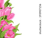 pink tulips on white background.... | Shutterstock .eps vector #193907156