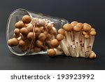 Brown Beech Mushroom On Black...