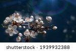 spring nature background.... | Shutterstock . vector #1939932388