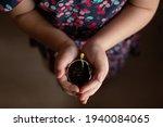Little Girl Hands Holding Small ...