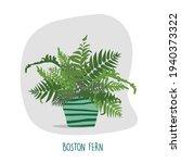 boston fern illustration.... | Shutterstock .eps vector #1940373322