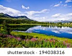 Small photo of Flowers and blue skies at Little Molas Lake in the San Juan Mountains of Colorado.