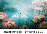 Two White Swans Couple Swimming ...