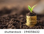 golden coins in soil with young ... | Shutterstock . vector #194058632