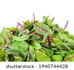 Mixed Salad Leaves Isolated On...