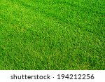 green shiny grass at the... | Shutterstock . vector #194212256