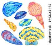 Sea Shells Watercolor Set. Hand ...