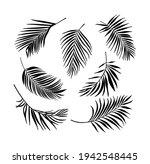 palm tree leaves black...   Shutterstock .eps vector #1942548445