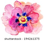 beautiful colorful flower ... | Shutterstock . vector #194261375