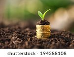 golden coins in soil with young ... | Shutterstock . vector #194288108