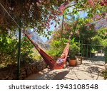Child In Hammock With Tropical...