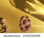 Eggshell Pattern With Spring...