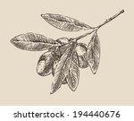 olive tree branch  vintage...   Shutterstock .eps vector #194440676