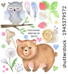 Watercolor Funny Forest Animals ...