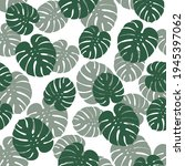 monstera leaves seamless... | Shutterstock .eps vector #1945397062
