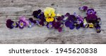 Pansy Flowers Composition. Mock ...