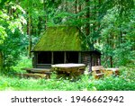 Forest Hut In Summer Woods....