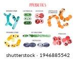 cute lactic acid bacteria... | Shutterstock .eps vector #1946885542