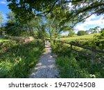 Hikers Footpath  Leading Away...