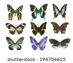 butterfly on white | Shutterstock . vector #194704625