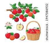 apple harvest  red apples in...   Shutterstock .eps vector #1947086932