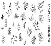 collection doodle style leaves... | Shutterstock .eps vector #1947124708