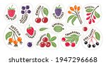 bright and juicy berry set....   Shutterstock .eps vector #1947296668