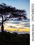 Early Morning Kilimanjaro...
