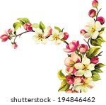 vector illustration of cherry... | Shutterstock .eps vector #194846462