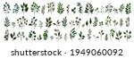 collection of greenery leaves... | Shutterstock .eps vector #1949060092