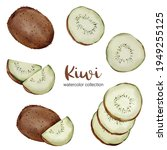 kiwi in watercolor collection...   Shutterstock .eps vector #1949255125