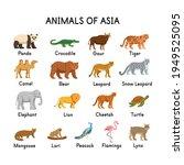 animals of asia  panda ... | Shutterstock .eps vector #1949525095