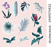 set of tropical protea  orhid...   Shutterstock .eps vector #1949574922