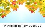 calm fall season. maple leaves...   Shutterstock . vector #1949615338
