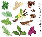 spices. vector menu icon set.... | Shutterstock .eps vector #1949651272