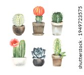set of cacti and succulents in... | Shutterstock . vector #1949723575