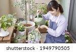 Asian Women Enjoying Gardening...