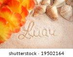 hawaiian beach background with... | Shutterstock . vector #19502164