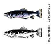 Salmon Fish Design Illustration ...