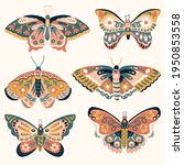 hand drawn various colorful... | Shutterstock .eps vector #1950853558