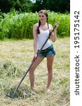 Small photo of hay fun: beautiful young glamor woman sexy girl in jeans shorts and white top with red manicure nails working with rake on farm collecting dry velour grasses on summer day green outdoors background