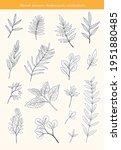 botanical stickers set.... | Shutterstock .eps vector #1951880485