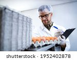Food Factory Technologist...