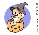 Cute Cat With Halloween Pumpkin ...