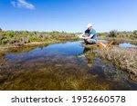Scientist Measuring Water...