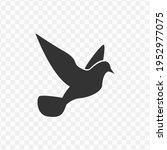 transparent bird icon png ...