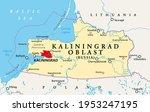 kaliningrad oblast  political...   Shutterstock .eps vector #1953247195