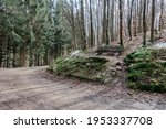 Gravel Trail Through A Forest...