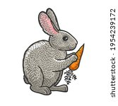Rabbit Hare Bunny With Carrot...